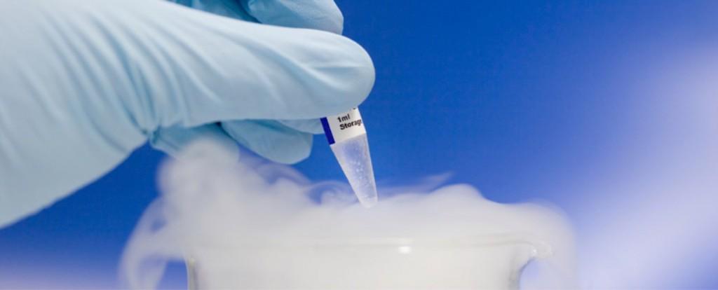 metodi-kriokonservatsii-spermi