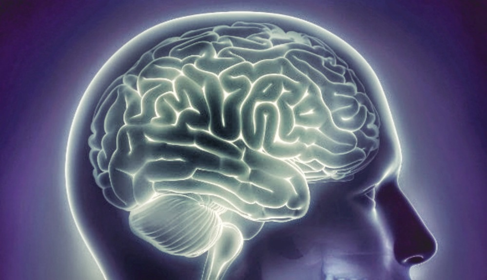 Brain Memory