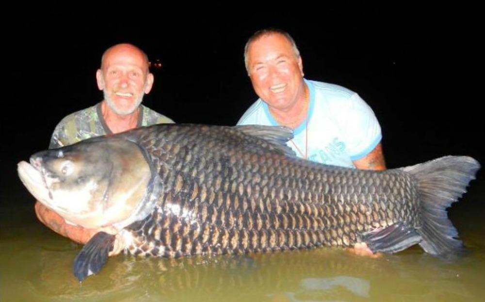96441940_ash-fishing-large_trans++vtrN2UbxMYVsmAi6d2_N4_K_WXSU0_PGaGVH7pG7p0w